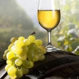 Hitvalló borászok - A St. Andrea borászat class=