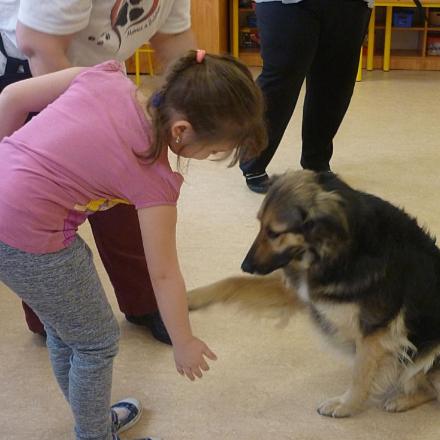 Mancs a szívhez-kutyaterápiás foglalkozás kicsiknek  class=